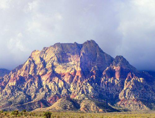 Escalada en Red Rock